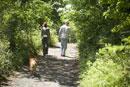 歩く男女の後ろ姿と犬