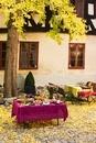 An autumnal, open air buffet