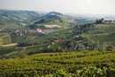 A view of the vineyards in the valley of Barolo (Piedmont, I