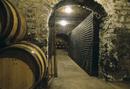 Barrels and bottles of wine in a wine vault