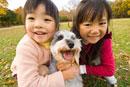 紅葉と犬と遊ぶ女の子