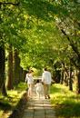 新緑の道を歩いて行く後姿の家族3人