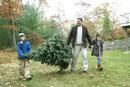 もみの木を運ぶ親子