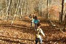 落ち葉の中を走る子供達