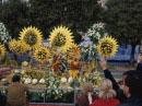 花合戦で花を投げる女性達