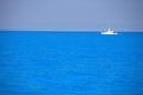 バハマの海とドルフィンリサーチボート