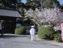 延命寺参道と遍路