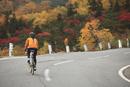 紅葉の乗鞍エコーラインを登る女性サイクリスト