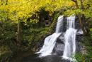 宇津江四十八滝の秋