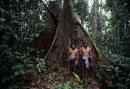 プナン族狩猟民