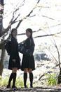 下校中の制服姿の女子高生2人