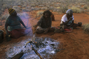 ヒャクメオオトカゲを料理するアボリジニ(マウント・リエビグ出身ルリチャ語を話す)の女性