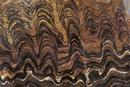 ストロマトライト(10億年前)の断面 *撮影クレジットとして