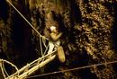 アナツバメの黒い巣を採集する