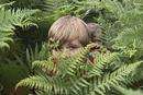 シダの茂みに隠れる子どもたち