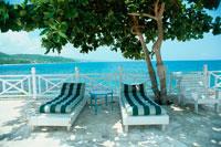 海岸の木陰に置かれた2つのチェアーベッド ジャマイカ