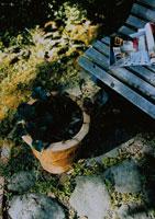 ガーデニング ベンチと植木