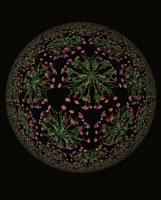 万華鏡のイメージ 花のパターン柄の球体