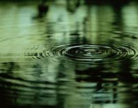 水滴で波紋が広がる水面(緑)