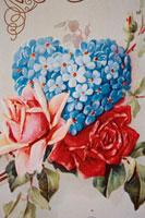 ハートをかたちどった花 00241000630| 写真素材・ストックフォト・画像・イラスト素材|アマナイメージズ