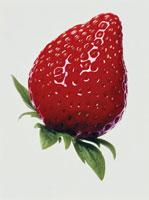イチゴ 00243010035| 写真素材・ストックフォト・画像・イラスト素材|アマナイメージズ