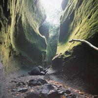 苔岩壁に挟まれた谷間