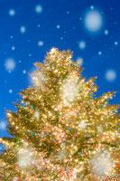輝くクリスマスツリーと雪