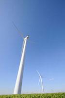 風車と畑 00268011092| 写真素材・ストックフォト・画像・イラスト素材|アマナイメージズ