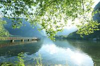 世界遺産ハルシュタット湖と新緑