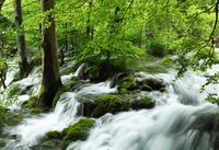 世界遺産プリトヴィツェ湖群国立公園の滝