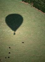 ファームと気球の影