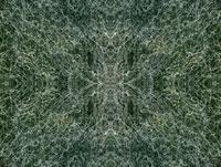 光の軌跡 00284000932| 写真素材・ストックフォト・画像・イラスト素材|アマナイメージズ