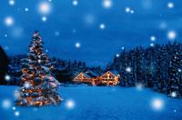 ツリーと家のクリスマスイルミネーション