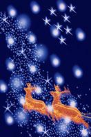 トナカイと雪 00327010143| 写真素材・ストックフォト・画像・イラスト素材|アマナイメージズ