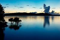 西表島のマングローブと夕景