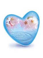 桜と水面を映すガラスのハート CG 00330000711| 写真素材・ストックフォト・画像・イラスト素材|アマナイメージズ
