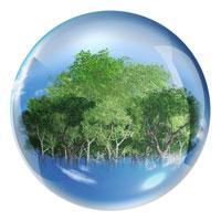 ガラス球内に木々