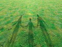 芝生に映る手を繋いだ親子三人の影
