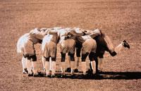 円陣をくむサッカー選手