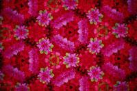 万華鏡の花のパターン(つつじ)