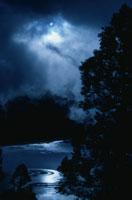 夜空の満月と湖畔の森