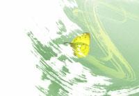 蝶とペインティング(緑色・白) 春