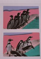 ペンギン 合成