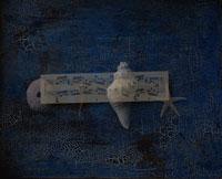 楽譜と貝とヒトデ 合成