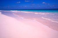 ピンクの砂浜