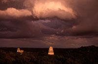 密林に聳えるマヤ遺跡 00414010385| 写真素材・ストックフォト・画像・イラスト素材|アマナイメージズ