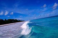 ピンクサンドビーチの波 00414010689| 写真素材・ストックフォト・画像・イラスト素材|アマナイメージズ