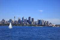シドニー湾より市街を望む