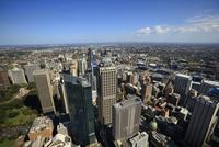 シドニータワー展望台よりシドニー市街地を望む