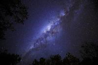 南半球の星空